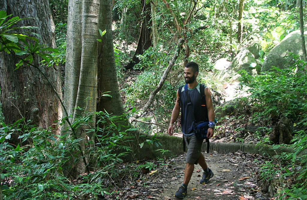 ciudad perdida best hikes in south america