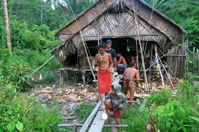 uma islas mentawai siberut