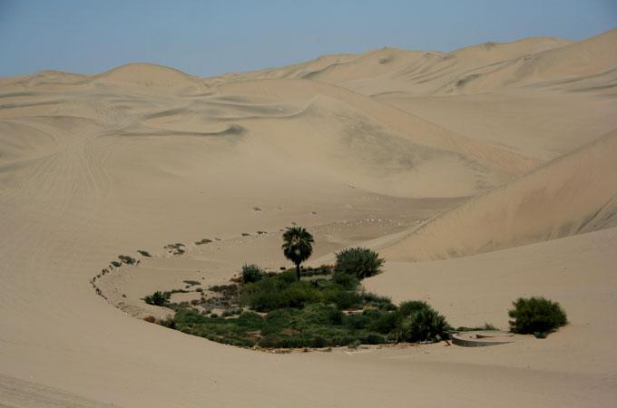 oasis huacachina backpacking in Peru. travel guide