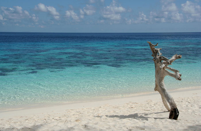 isla de jaco timor leste