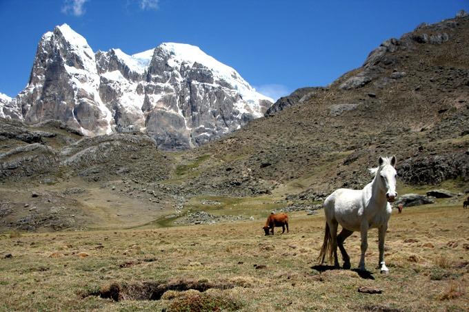 huanactapac trekking al circuito de huayhuash sin guías