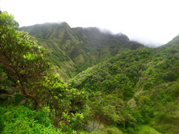 morne trois pitons trekking al boiling lake en dominica