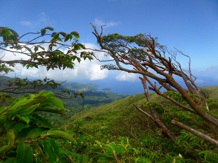 caribbean hiking adventures la soufriere volcano saint vincent