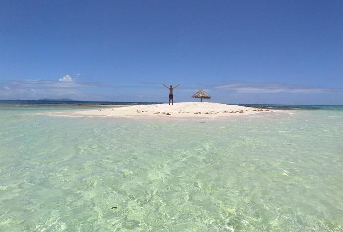 tobago cays marine park morpion