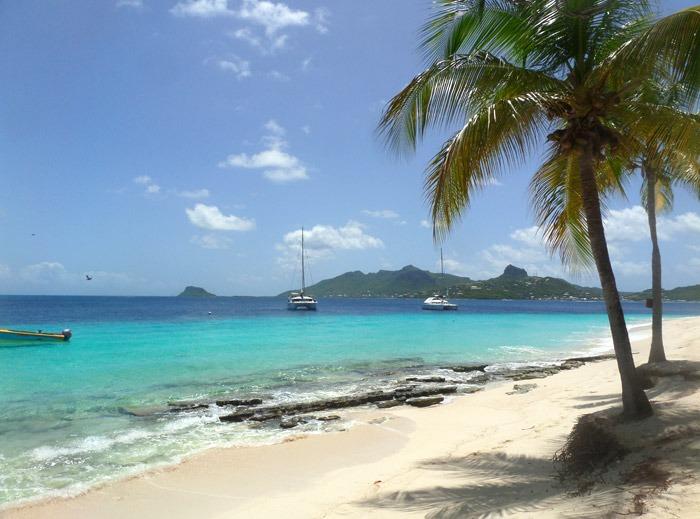 tobago cays marine park beach palm island