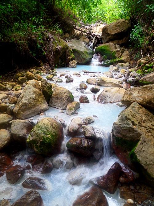 trekking al boiling lake en dominica rio bosque