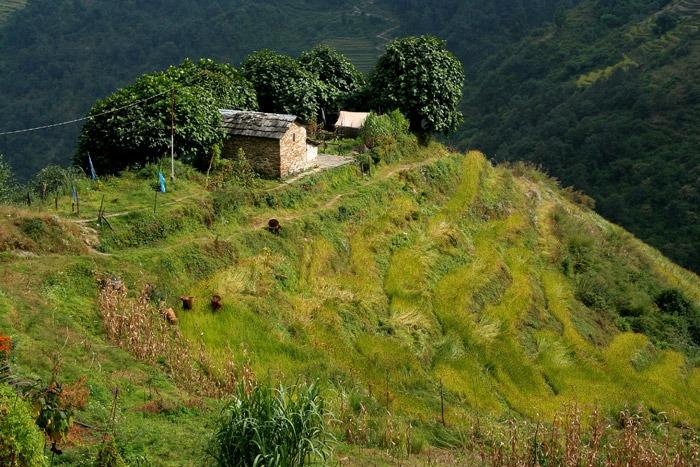 annapurna base camp sanctuary