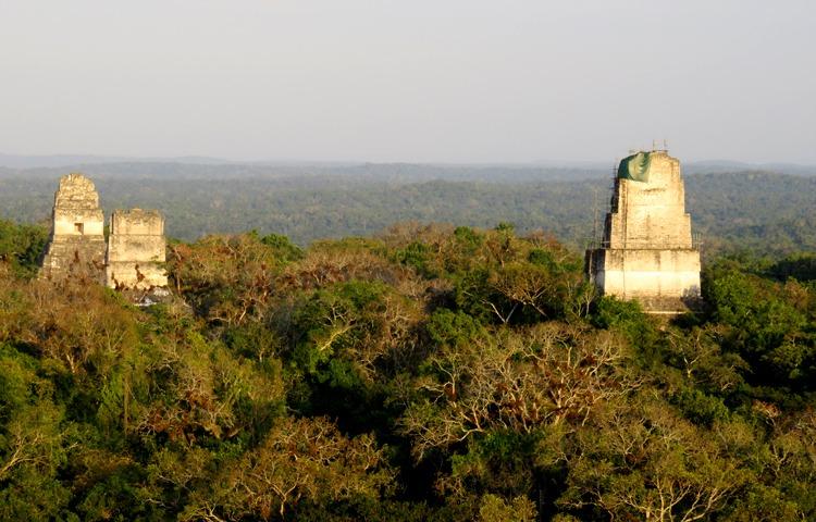 temple IV guatemala tikal at sunset