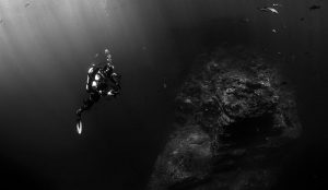 The Best Scuba Diving Equipment List