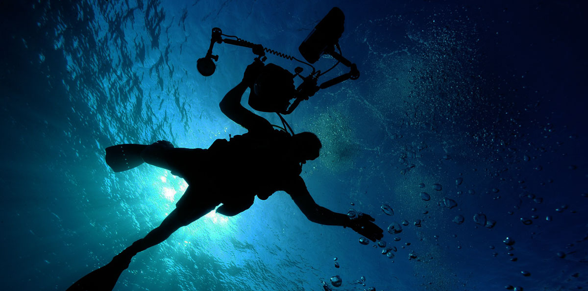 Top 10 Best Dive Cameras Review 2017. Buyers Guide
