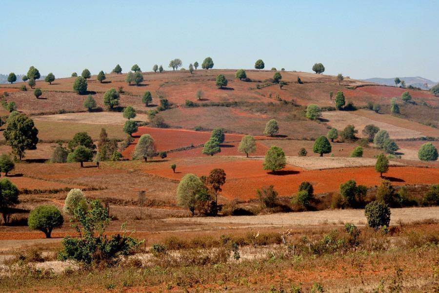 kalaw landscape