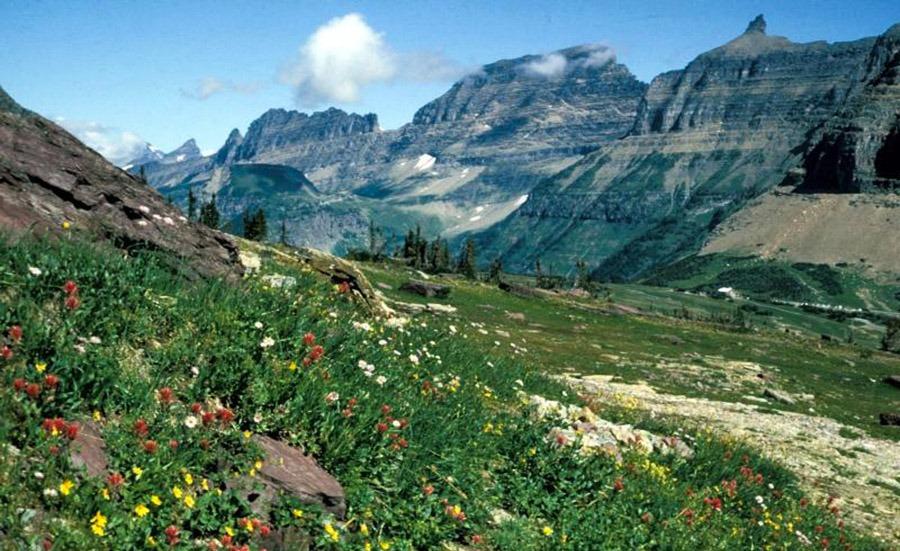 camping parque nacional glaciares