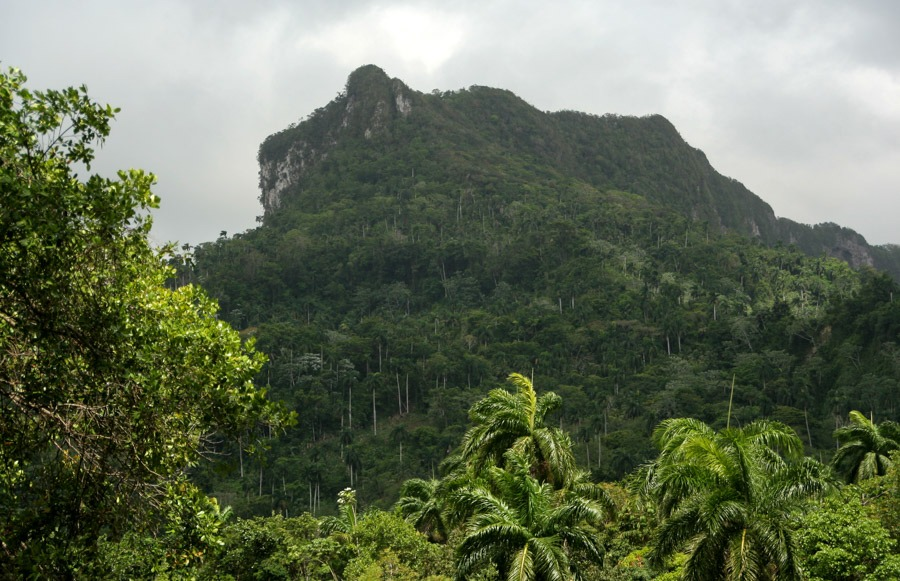 Yunque Backpacking Cuba