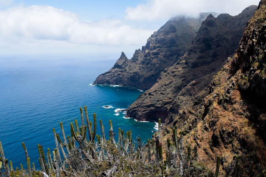 Punta de Hidalgo best hikes in tenerife