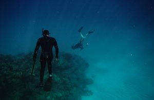 best spearfishing wetsuits
