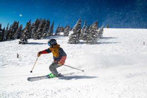 Mejores Bolsas de Esquís
